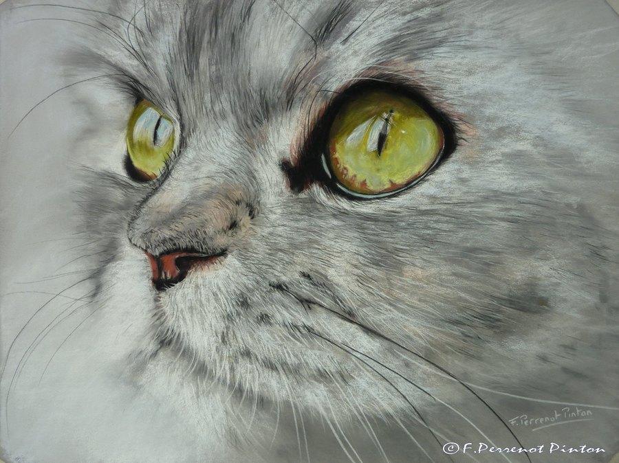 pastels pastels animaliers pastels animaux pastelliste animalier. Black Bedroom Furniture Sets. Home Design Ideas
